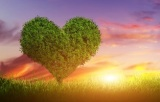 Das Gebet für Liebende – für eine Beziehung vollerWunder!